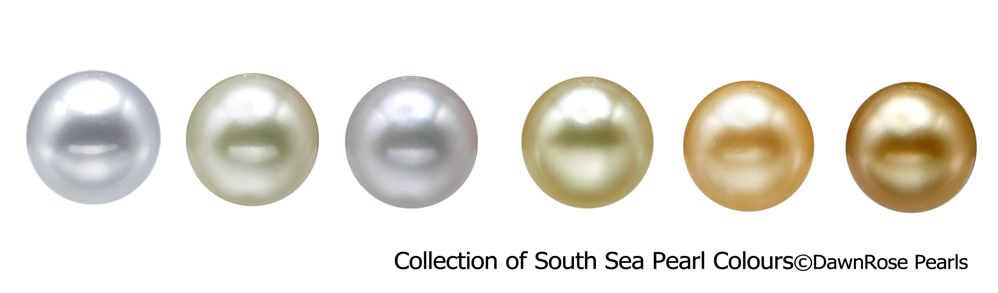 collection of south sea pearl colurs
